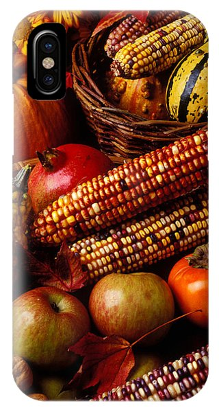 Autumn Harvest  IPhone Case