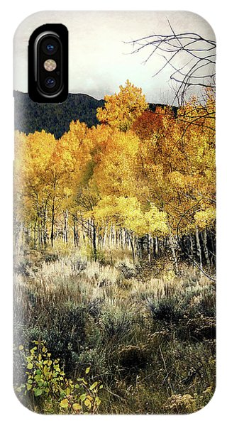Autumn Hike IPhone Case