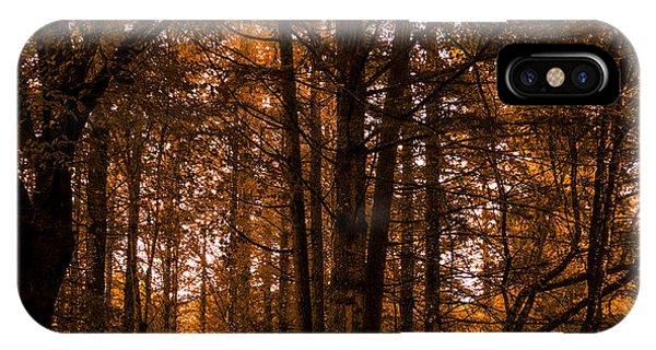 Autumn In Colligan Wood IPhone Case