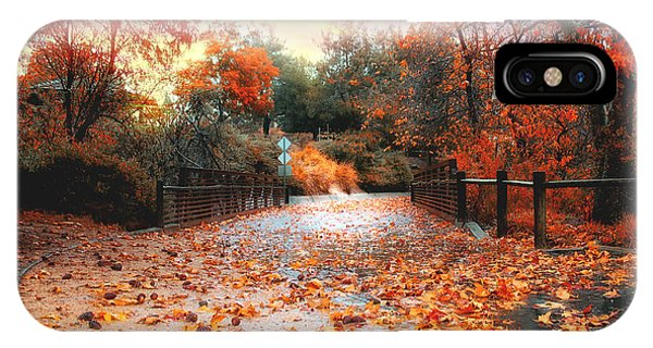 Autumn In Discovery Lake IPhone Case