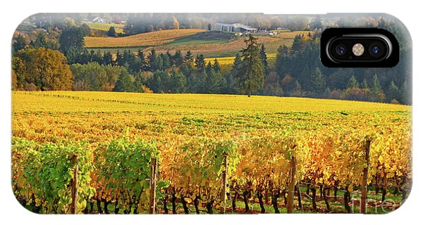 Autumn In Oregon Wine Country IPhone Case
