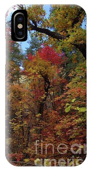 Autumn In Sedona IPhone Case
