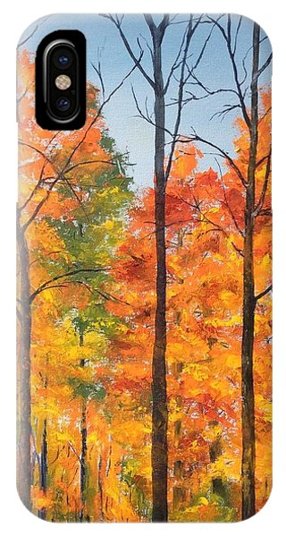 Autumn In South Wales Ny IPhone Case