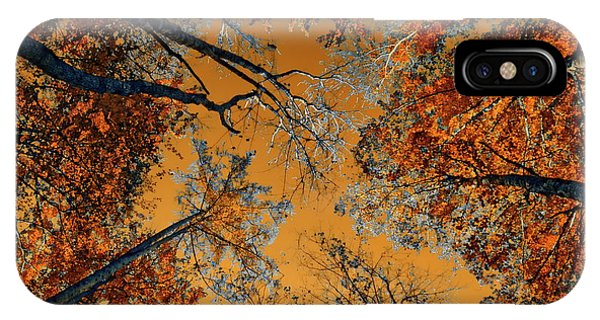 Autumn In The Forest IPhone Case