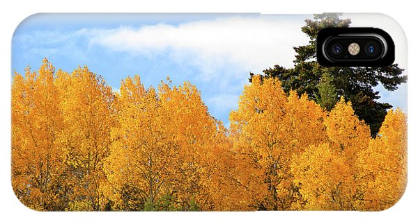 Autumn In The Owyhee Mountains IPhone Case
