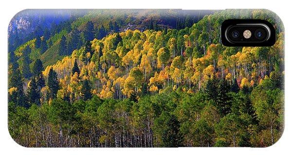 Autumn In Utah IPhone Case