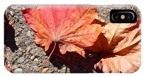 Orange iPhone Case - Autumn Is Here by Blenda Studio