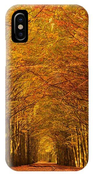 Autumn Lane In An Orange Forest IPhone Case