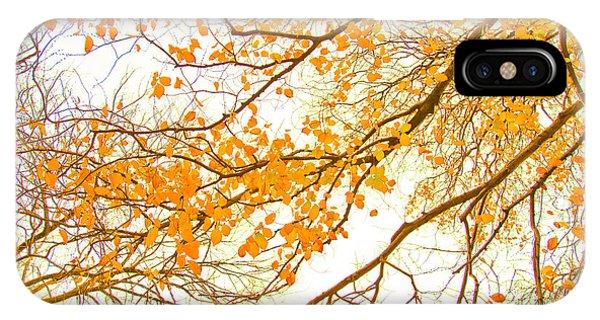 Fall Flowers iPhone Case - Autumn Leaves by Az Jackson