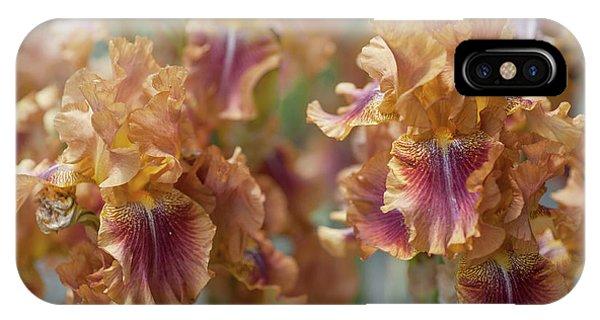 Autumn Leaves Irises In Garden IPhone Case