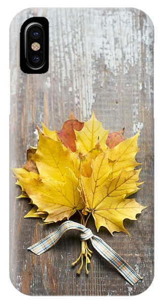 Autumn Leaves Tied With Ribbon IPhone Case