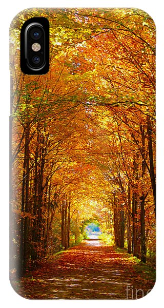 Autumn Light And Leaf Painting IPhone Case