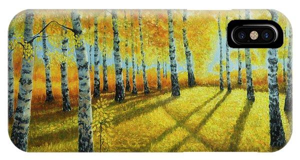 Salo iPhone Case - Autumn Light by Veikko Suikkanen