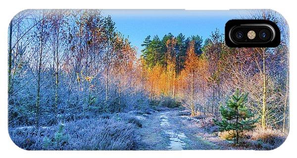 Autumn Meets Winter IPhone Case