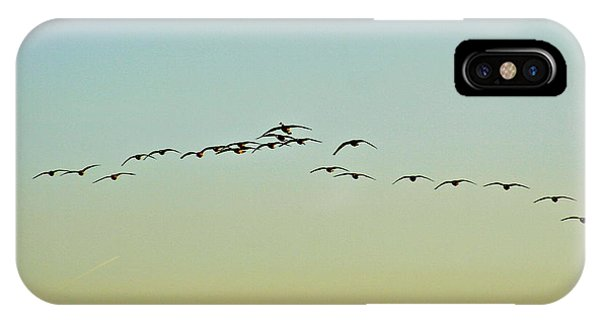 Autumn Migration IPhone Case