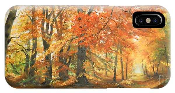 Autumn Mirage IPhone Case