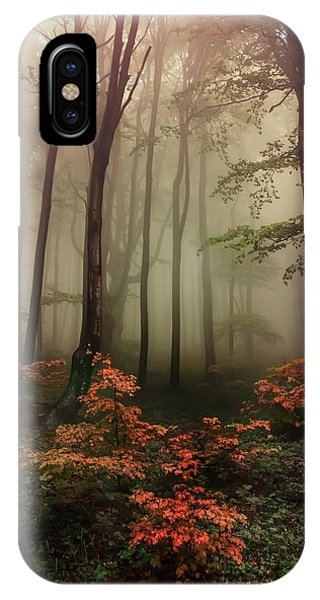 Autumn Mornin In Forgotten Forest IPhone Case