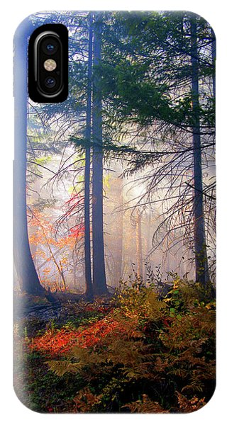 Autumn Morning Fire And Mist IPhone Case
