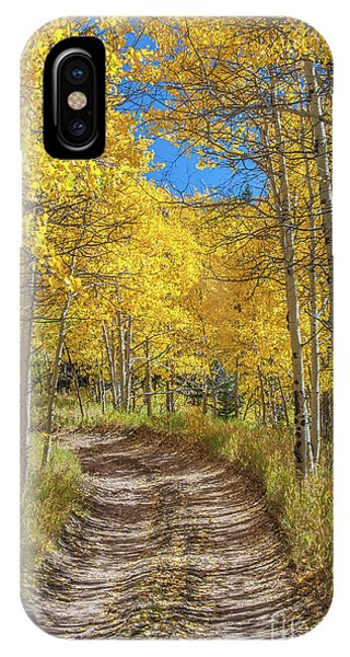 Autumn On Medano Pass IPhone Case