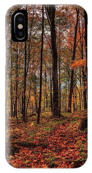 Autumn On The Ice Age Trail IPhone Case