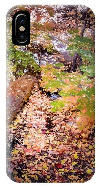 Autumn On The Mountain IPhone Case