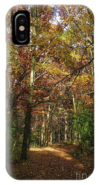 Autumn Path At St Croix Bluffs IPhone Case