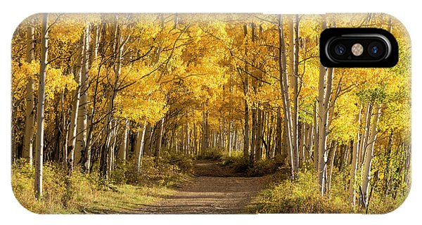 IPhone Case featuring the photograph Autumn Path by Denise Bush