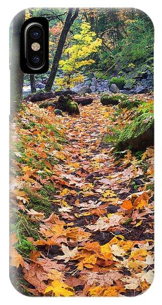 Path iPhone Case - Autumn Path by Mike  Dawson