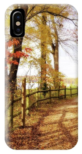 Autumn Pathway IPhone Case