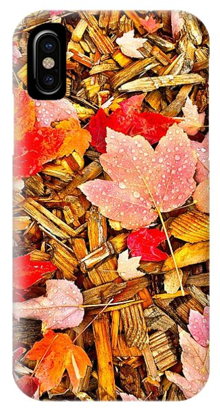 Autumn Potpourri IPhone Case