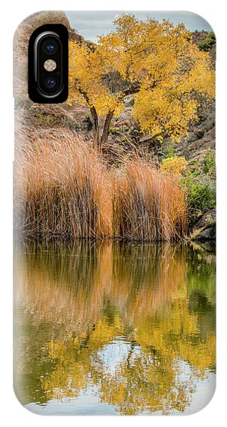 Autumn Reflection At Boyce Thompson Arboretum IPhone Case