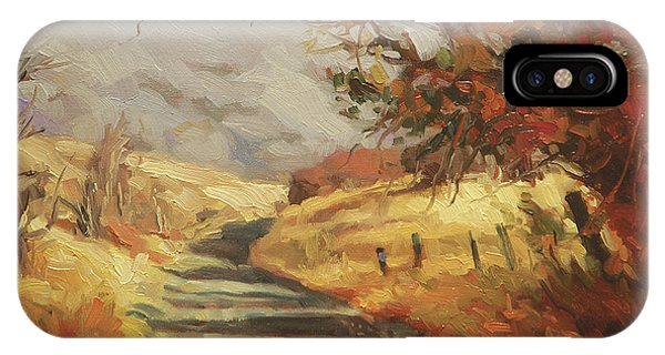 Ranch iPhone Case - Autumn Road by Steve Henderson