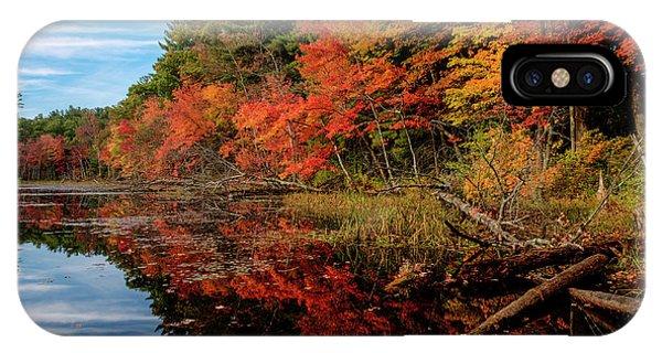 Autumn Scene IPhone Case