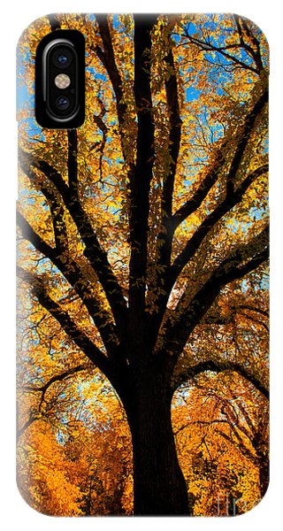 Autumn Season 4 IPhone Case