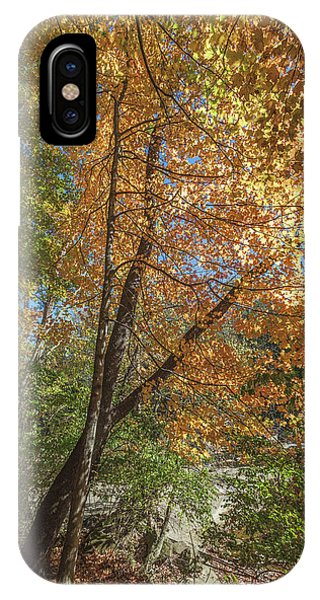 IPhone Case featuring the photograph Autumn Show On The River by Lon Dittrick