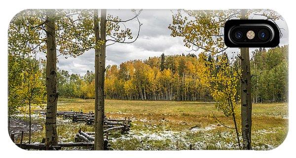 Autumn Snow Fall IPhone Case