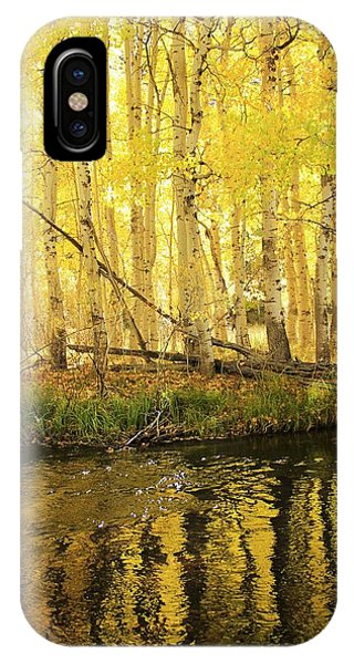 Autumn Soft Light In Stream IPhone Case