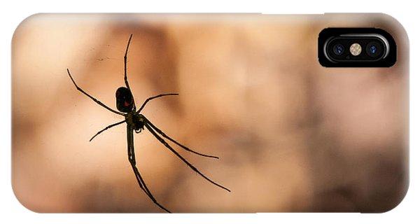 Autumn Spider IPhone Case