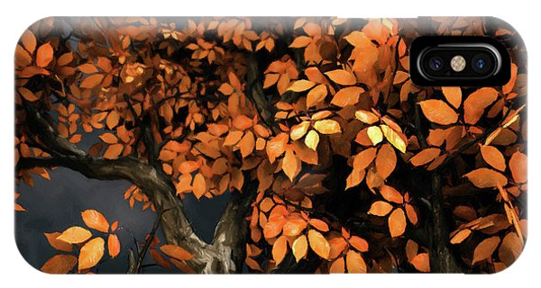 Tree iPhone Case - Autumn Storm by Cynthia Decker