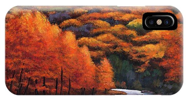 Birch Tree iPhone Case - Autumn Stream by Johnathan Harris