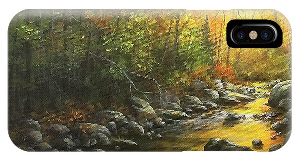 Autumn Stream IPhone Case