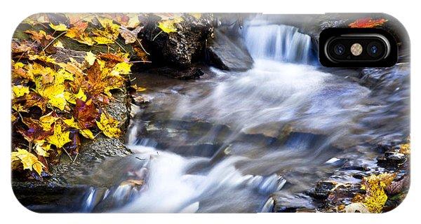 Autumn Stream No 2 IPhone Case