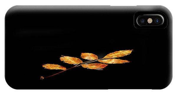 Autumn Suspended IPhone Case