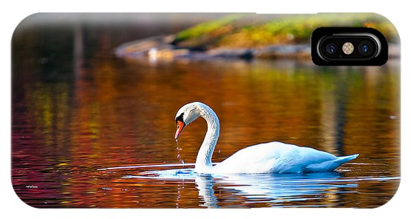 Autumn Swan Lake IPhone Case