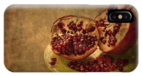 Seeds iPhone Case - Autumn Treat by Evelina Kremsdorf