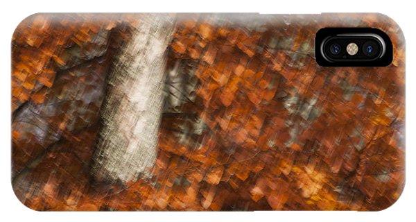 Autumn Tree IPhone Case