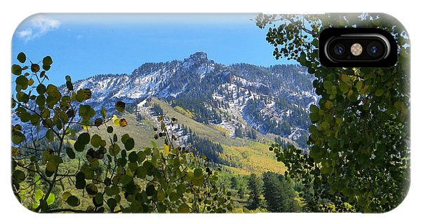 Autumn View Through Aspen Leaves IPhone Case