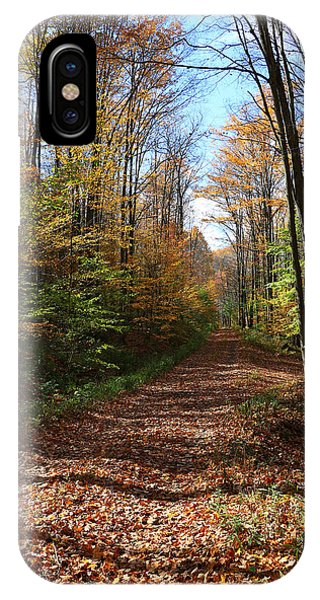 Autumn Woods Road IPhone Case