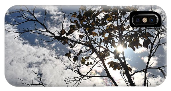 Autumn Yellow Back-lit Tree Branch IPhone Case