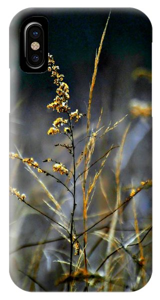 The Nature Center iPhone Case - Autumns End by Diana Angstadt